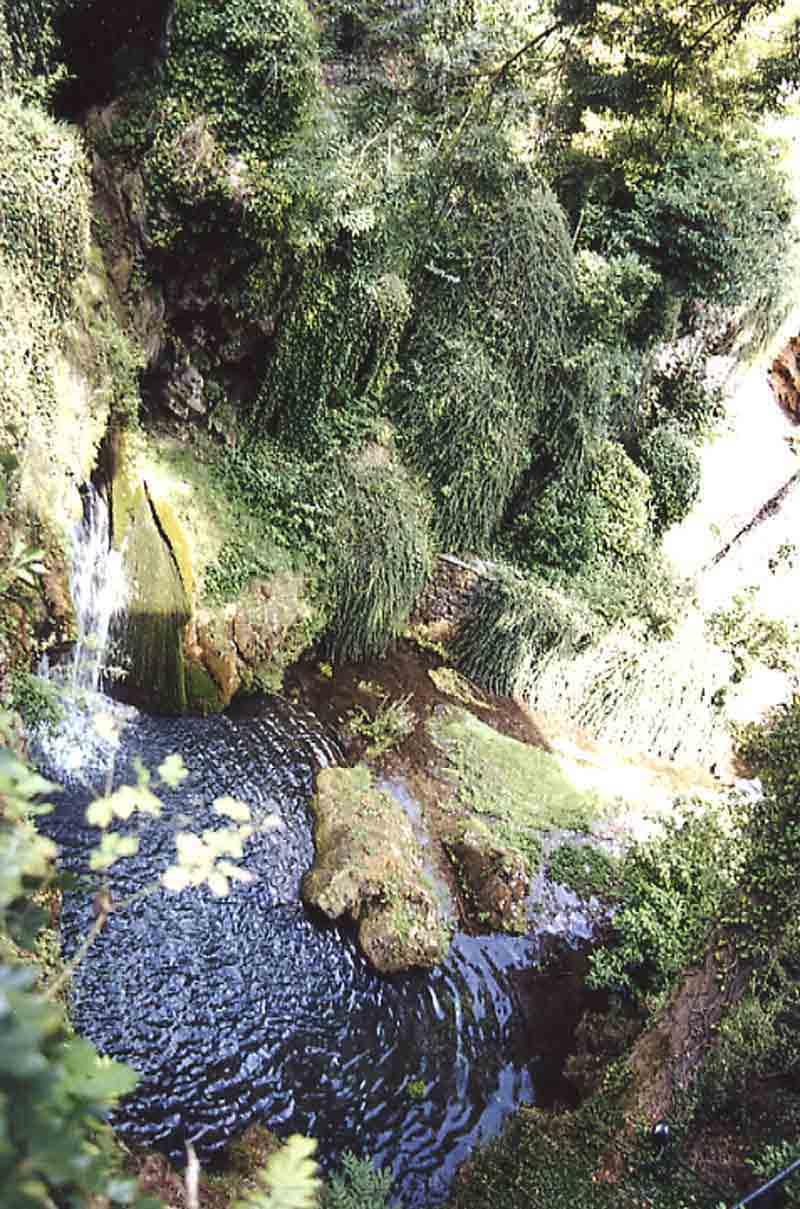 ......Dans une de ces petite rues , l'on arrive à un havre de paix avec un très beau jardin avec cascade . C'est le jardin secret de Cornus ...